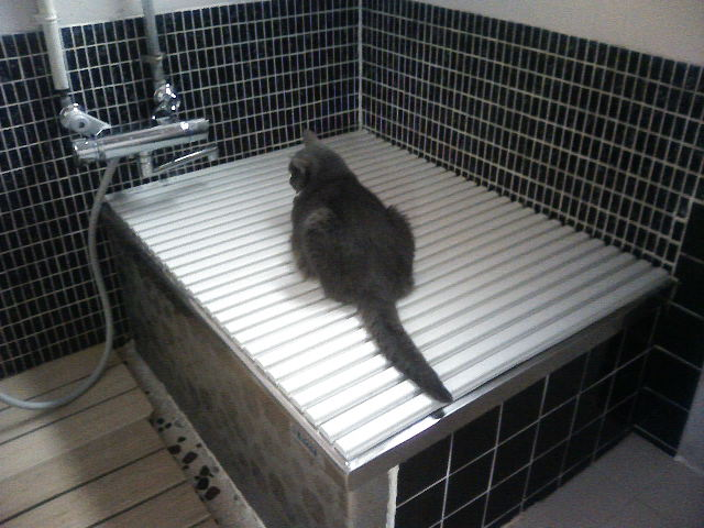 お風呂の温もり