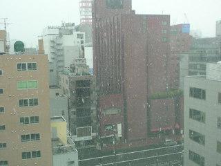 あれ?雪だ!