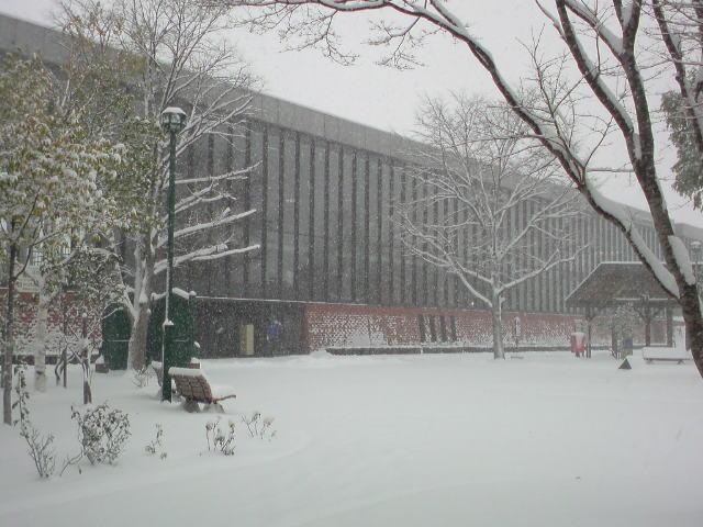 いきなり大雪